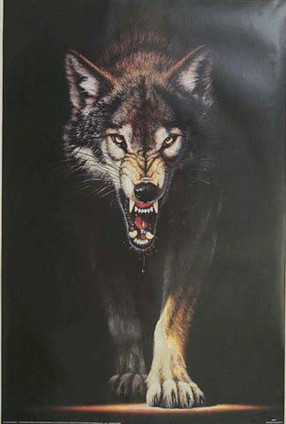 Image result for wolf snarling painting